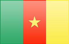 Fahne von Kamerun